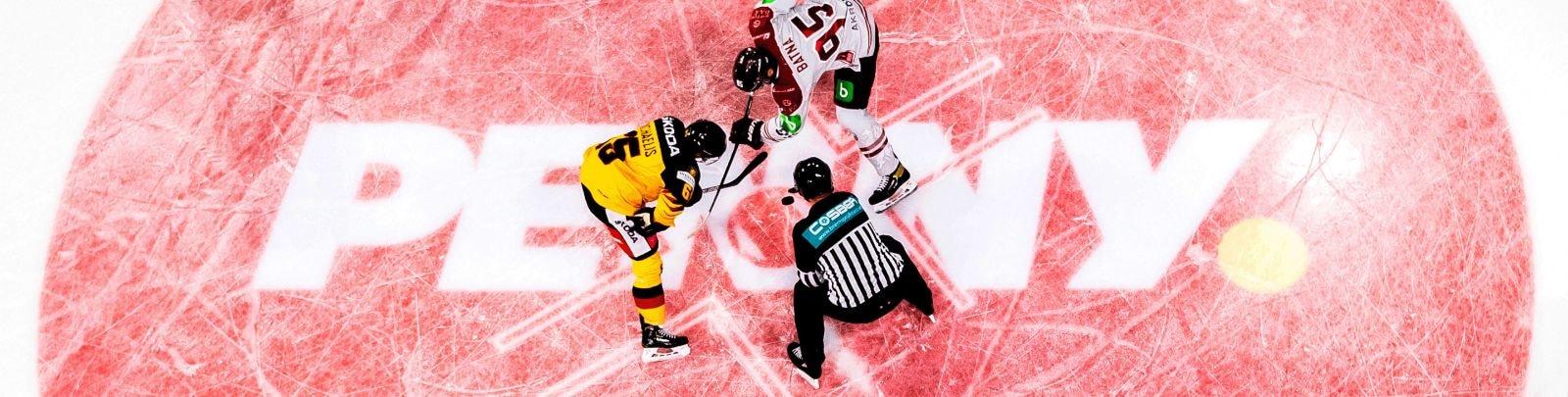 Unterstützer des Deutschen Eishockeys